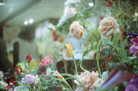 Camera: Petri 1.9 Color Corrected Super 35 mm rangefinder Film: Agfa 400